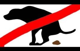 wmo leudal hond grond badkamer aanpassing blijft uit